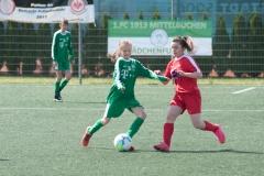 Pokalfinale Hammersbach 010518-0598