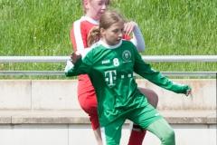 Pokalfinale Hammersbach 010518-0678