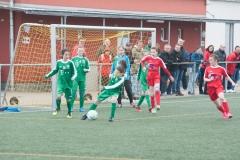Pokalfinale Hammersbach 010518-0624